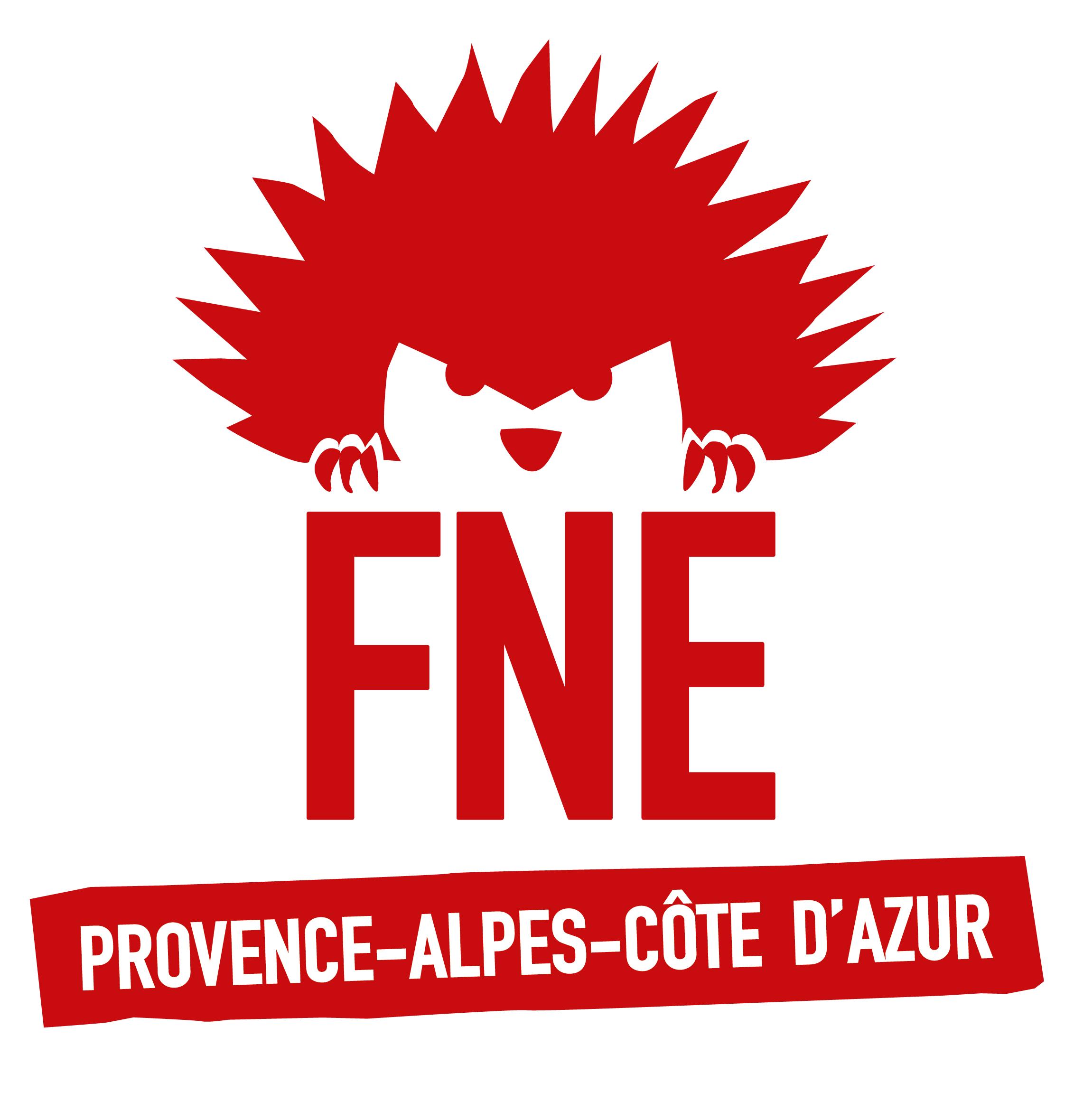 fne-logo