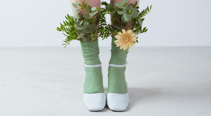 Photo chaussures et plantes